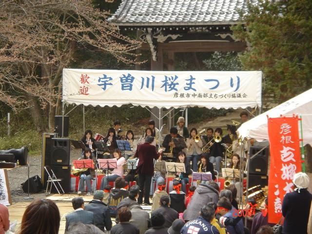 宇曽川桜祭り