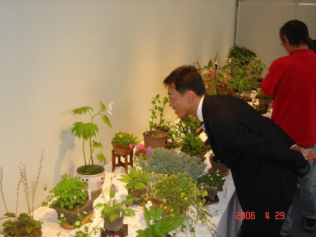 彦根山草会「春の展示会」