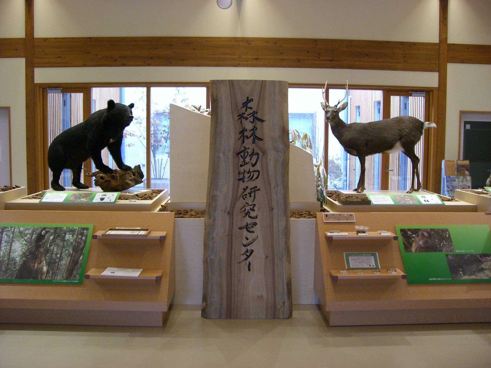 兵庫県森林動物研究センター(1)