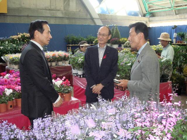 国際花市場