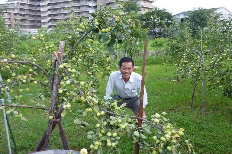 彦根りんご収穫祭