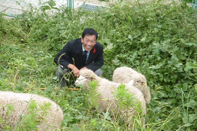 彦根市立病院の羊と